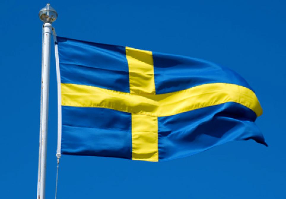 Svenska flaggan.png