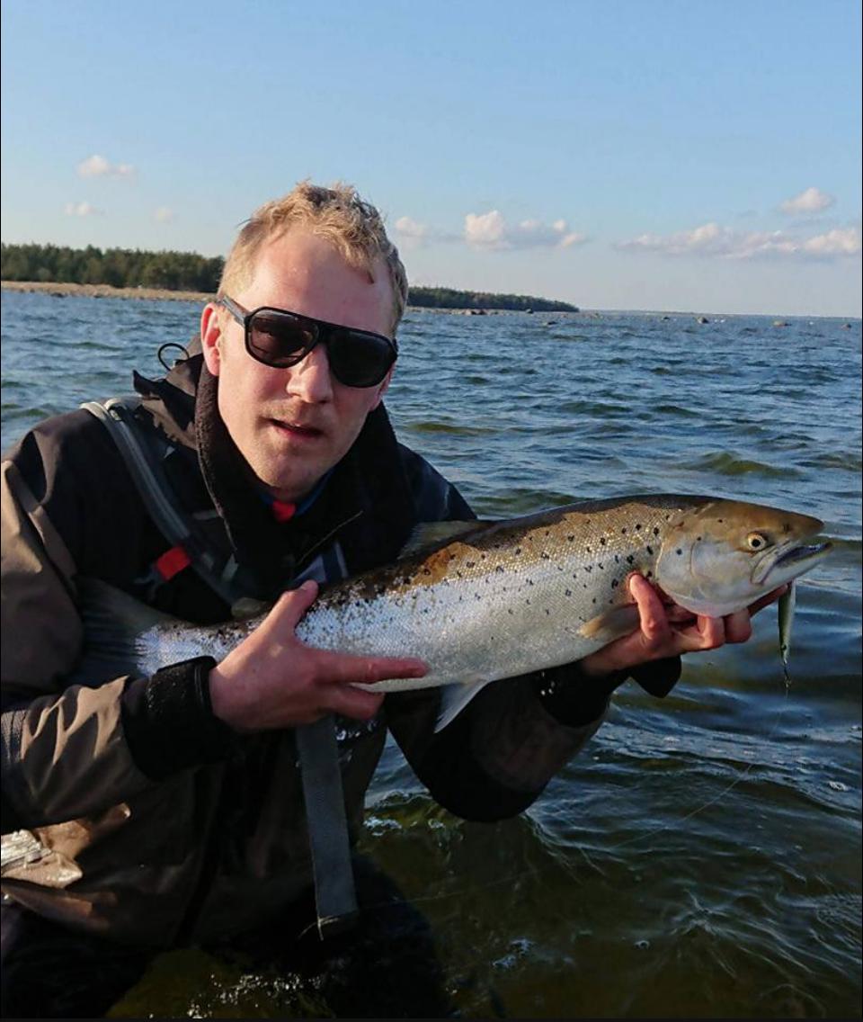 Gotland våren 2018.png